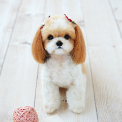 Japan Hamanaka Wool Needle Felting Lesson Kit - Shih Tzu