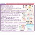 Japan San-X Sumikko Gurashi Keychain Plush Sewing Kit - Ebifurai No Shippo & Tapioca / Dinosaur - 5